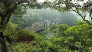 Parque Natural da Mata Atlantica proximo a Otacilio Costa – Igaras Hotel 2